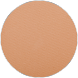 FREEDOM SYSTEM MATTIFYING PRESSED POWDER STAGE SPORT STUDIO NF INGLOT Bangladesh icon